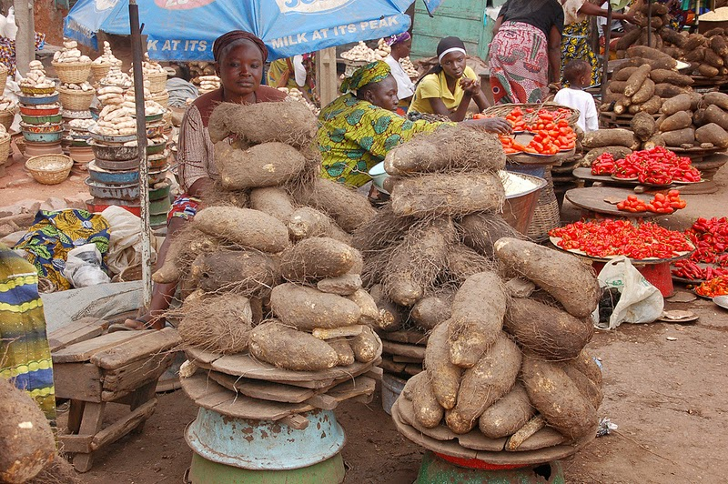Woman looks on as she displays her yam for sale at market