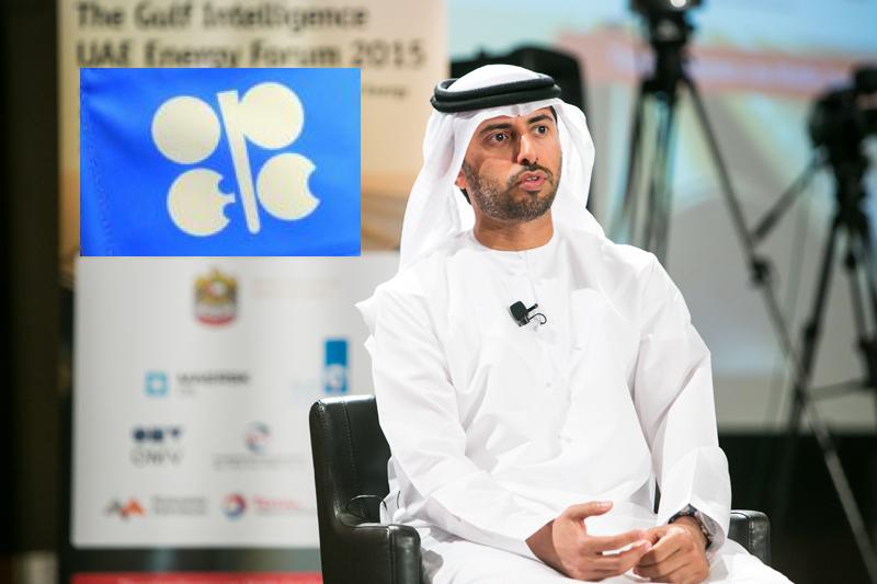 Suhail Al Mazrouei, U.A.E. Minister of Energy