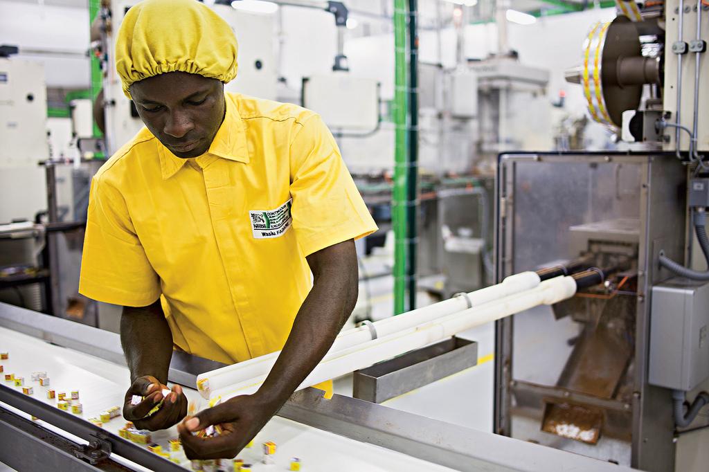 Nestle factory production line