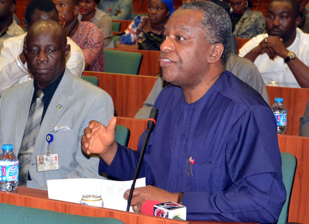 Geoffrey Onyeama, Nigeria's minister of foreign affairs,