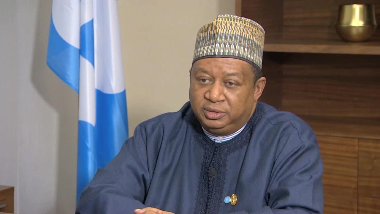 Mohammad Barkindo, OPEC Secretary-General
