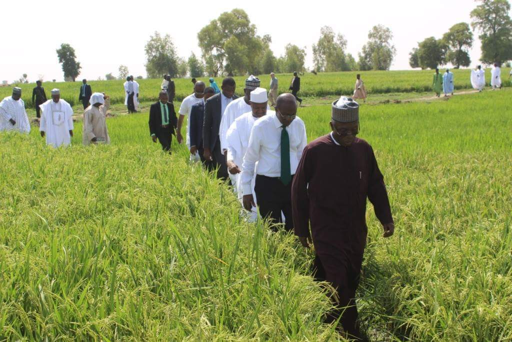 Audu Ogbeh, Nigeria's Minister of Agriculture and Rural Development; and other government officials on an agricultural tour.