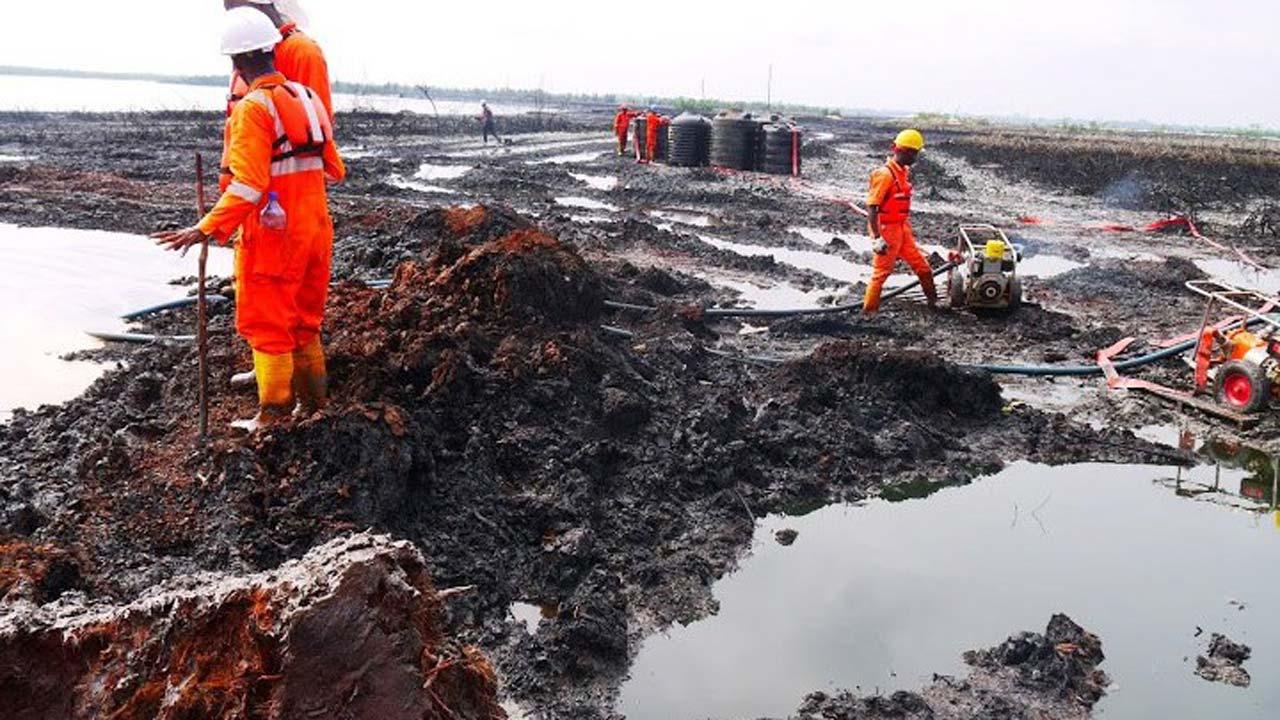 Nigeria's oil rich Ogoni, Ogonis