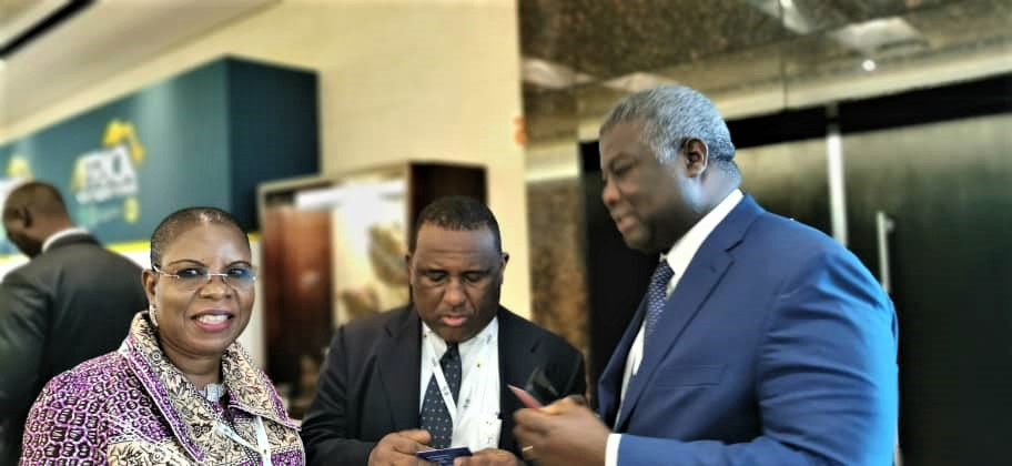 Ade Adefeko (l) of OLAM, Abdul Samad Rabiu (2nd left), Chairman/CEO, BUA Group, and others at the AIF '19