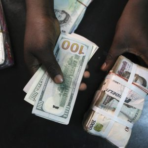 Naira stability: CBN spends $25.68bn in eight months