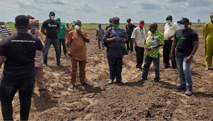 Abiodun commends GroupFarma's new 2,500 hectares of premium rice