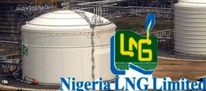 Marketers of cooking gas canvass full domestication of LPG