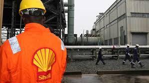 Shell Nigeria Gas CEO leads Nigeria Gas Association to 2022 in oil transition era