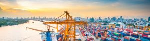 International Trade: Year in Review 2020