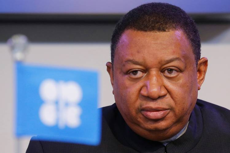 OPEC welcomes push for electric vehicles, but says fossil fuel remains strong