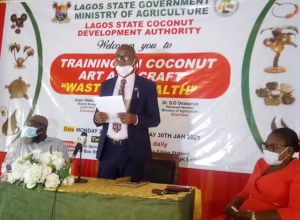 Lagos opens gateway to 1000 potential youth entrepreneurs with coconut-based art and craft training