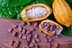 Nigerian cocoa dealers fret as price slump squeezes revenues
