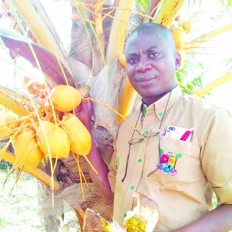 We project Lagos coconut transaction value to reach N350bn by 2024 – Olakulehin, GM, LASCODA