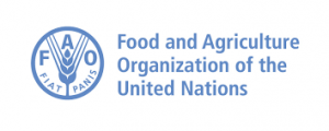 FAO, CECAF, FCWC strengthen partnership to fight illegal fishery in Nigeria, 5 other countries