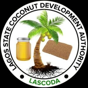 Lagos opens gateway to 1000 potential coconut-based art, craft entrepreneurs