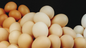 Nigeria commits to boost egg, meat production
