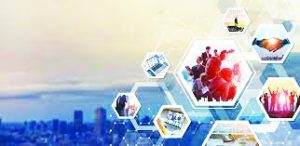 What Makes Business Ecosystems Succeed?