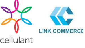 Cellulant, Link Commerce partner to improve cross-border trade across Africa