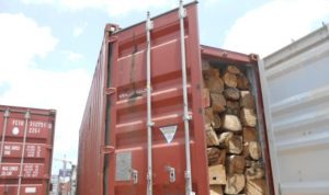 Four container loads of unprocessed wood