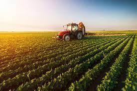 Relevance of smallholder finance in agricultural development
