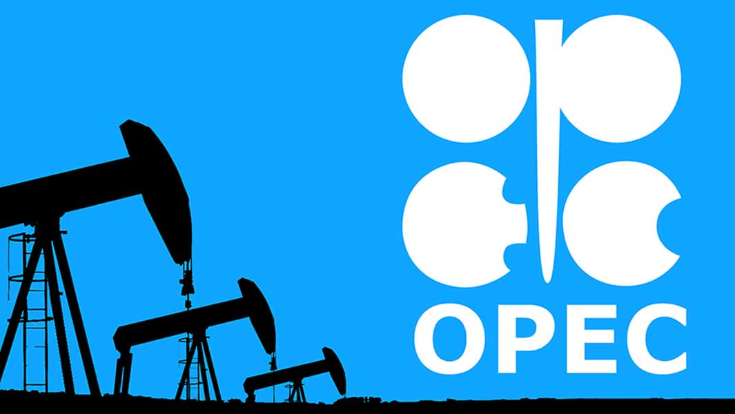 OPEC discounts Nigeria in rating Africa's refining outlook high