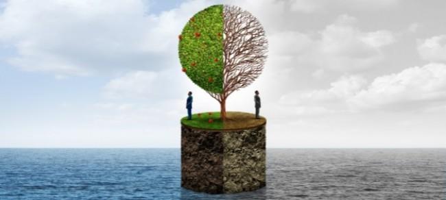 Trust, Social Capital and the Bond Market Benefits of ESG